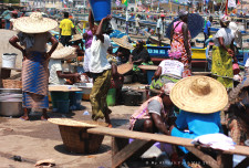 Elmina fish market. Like all markets in the two cities I've visited, only women do the selling.