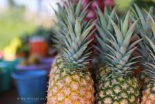 Queen pineapples.