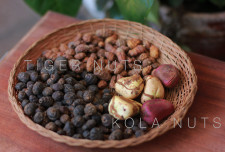 Today I tried some tiger and kola nuts for the first time. You couldn&#039;t find two more contrasting flavours.<br />